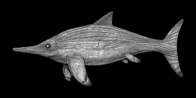 Paleozoology Photograph - Acamptonectes Marine Dinosaur by Nemo Ramjet