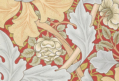 Stylish Drawing - Acanthus Leaves Wild Rose On Crimson Background by William Morris
