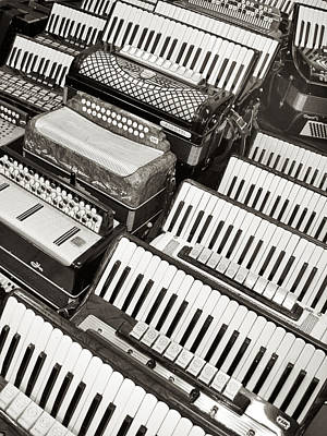 Photograph - Accordions by Mary Lee Dereske