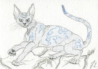 Extinct And Mythical Drawing - Aceo Blue Cat by Jennifer  Anne Esposito