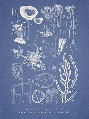 Aquarium Digital Art - Acetabularia Caraibica And Chondria Intricata by Aged Pixel