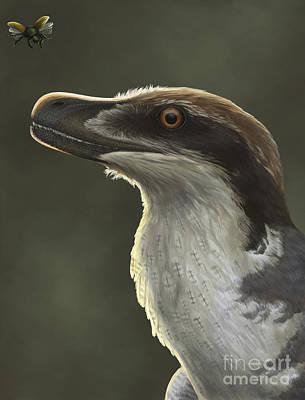 Dromaeosaurid Digital Art - Acheroraptor Dromaeosaurid Dinosaur by Emily Willoughby