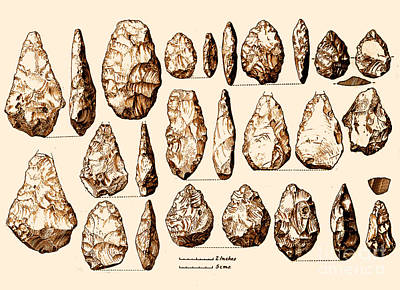 Photograph - Acheulean Hand-axes, Lower Paleolithic by Science Source