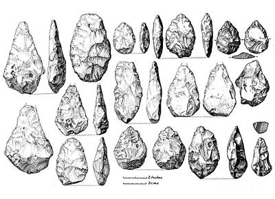 Biface Photograph - Acheulean Hand-axes, Lower Paleolithic by Wellcome Images