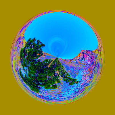 Photograph - Acid Desert Orb by Brent Dolliver
