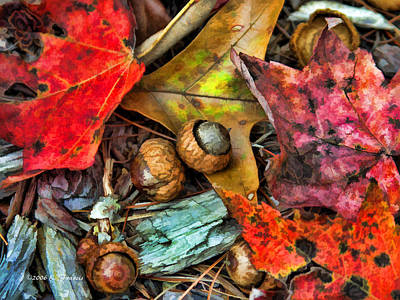 Acorns And Leaves Art Print by Kenny Francis