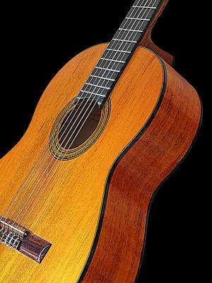 Photograph - Acoustic Guitar by Gill Billington