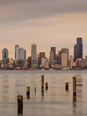 Across Elliott Bay Art Print