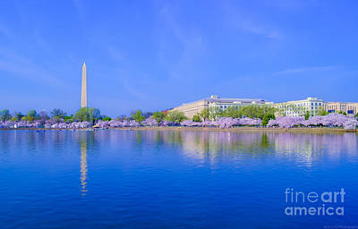 Photograph - Across The Basin With Blossoms by Jeff at JSJ Photography