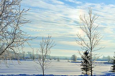 Photograph - Across The Field In Winter by Lisa  DiFruscio