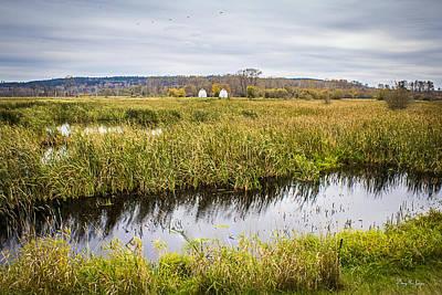 Bird Photograph - Across The Pond by Barry Jones