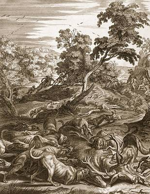 Actaeon Turned Into A Stag And Devoured Print by Bernard Picart