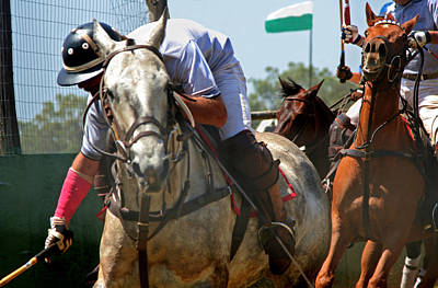 Photograph - Action Packed Polo by John Orsbun