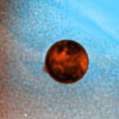 Active Volcanic Plumes On Io, Hst Image Print by Science Source