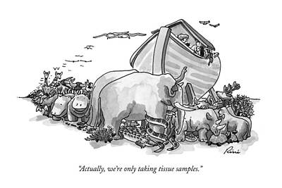 Noah Drawing - Actually, We're Only Taking Tissue Samples by J.P. Rini