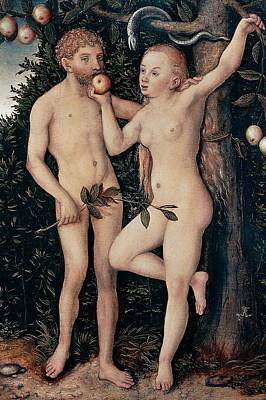 Territories Painting - Adam And Eve by Lucas Cranach Elder