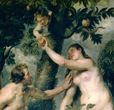 Apple Orchards Painting - Adam And Eve by Rubens
