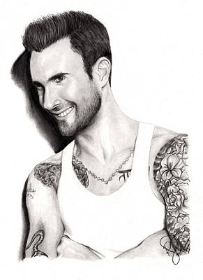 Drawing - Adam Levine by Rosalinda Markle