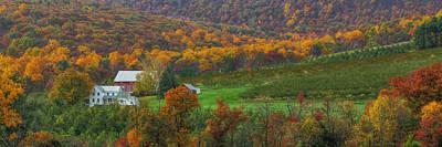 Ldeiter78 Digital Art - Adams County - Wine Country by Lori Deiter