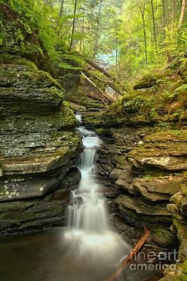 Photograph - Adams Creek Falls by Adam Jewell