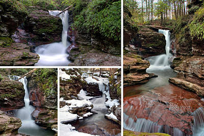 Photograph - Adams Falls In Every Season by Gene Walls