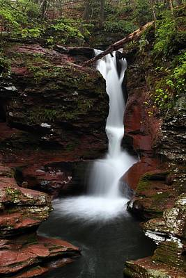 Photograph - Adams Falls by Mike Farslow