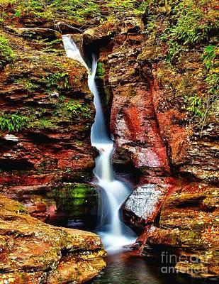 Photograph - Adams Falls - Ricketts Glen by Nick Zelinsky