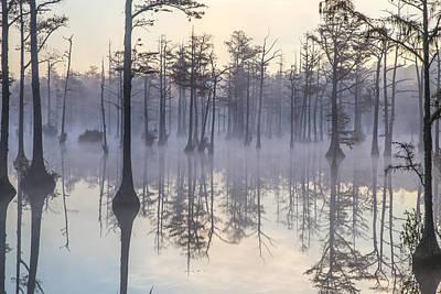 Photograph - Adams Mill Pond 16 by Jim Dollar