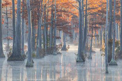 Photograph - Adams Mill Pond 25 by Jim Dollar