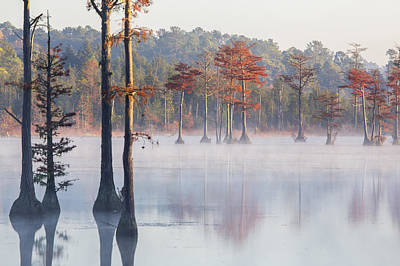 Photograph - Adams Mill Pond 36 by Jim Dollar