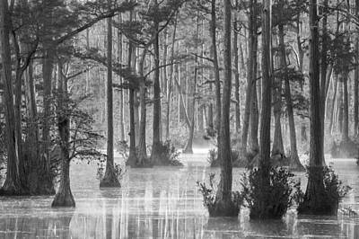 Photograph - Adams Mill Pond 38 Bw by Jim Dollar