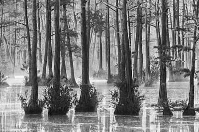 Photograph - Adams Mill Pond 39 Bw by Jim Dollar