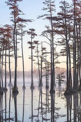 Photograph - Adams Mill Pond 47 by Jim Dollar