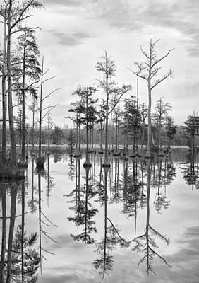 Photograph - Adams Mill Pond Panorama 01 Bw by Jim Dollar
