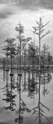 Photograph - Adams Mill Pond Panorama 06 Bw by Jim Dollar