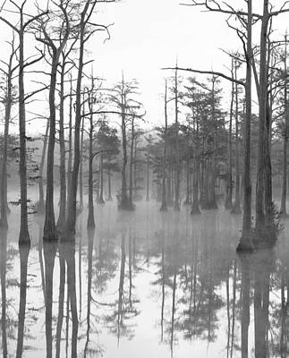Photograph - Adams Mill Pond Panorama 07 Bw by Jim Dollar
