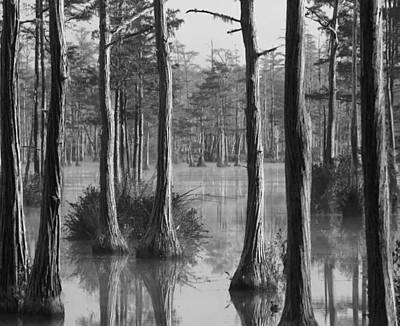 Photograph - Adams Mill Pond Panorama 09 Bw by Jim Dollar