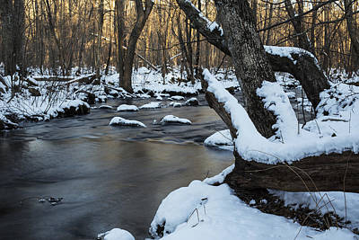 Photograph - Adamsville Brook by Andrew Pacheco