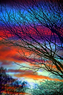 Rabindranath Tagore Photograph - Adding Color To My Sunset Sky by Gwyn Newcombe