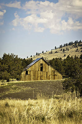 Photograph - Adin Barn by Sherri Meyer