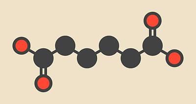 Adipic Acid Nylon Building Block Molecule Print by Molekuul