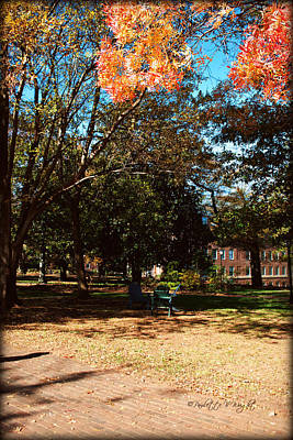 Photograph - Adirondack Chairs 4 - Davidson College by Paulette B Wright