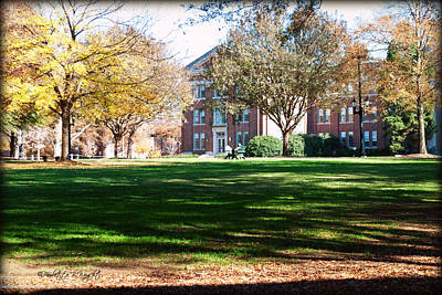 Photograph - Adirondack Chairs 6 - Davidson College by Paulette B Wright