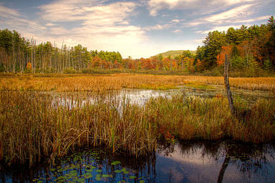 Photograph - Adirondack Pond by David Patterson
