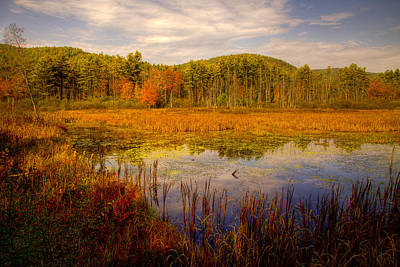 Photograph - Adirondack Pond II by David Patterson
