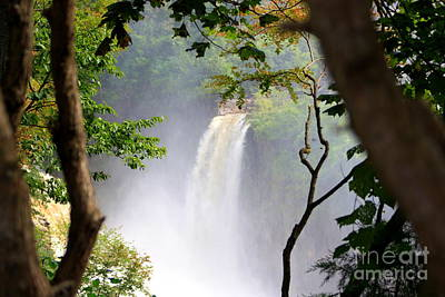 Art Print featuring the photograph Adirondacks Waterfall by Patti Whitten