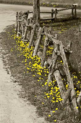 Split Rail Fence Photograph - Adorned Split-rail by Kathryn Whitaker