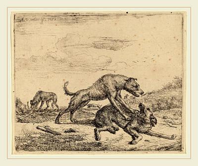 1636 Drawing - Adriaen Van De Velde Dutch, 1636-1672, Fighting Dogs by Litz Collection