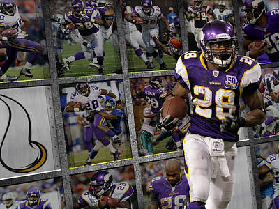 Peterson Photograph - Adrian Peterson Minnesota Vikings by Joe Hamilton