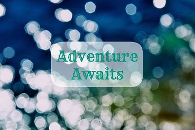 Photograph - Adventure Awaits by Catherine Murton